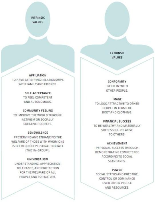 intrinsic-extrinsic-values
